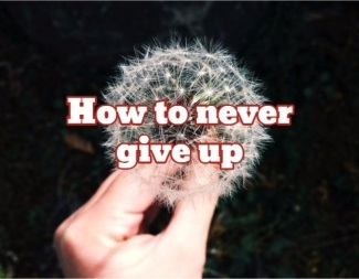 never-give-up-sm