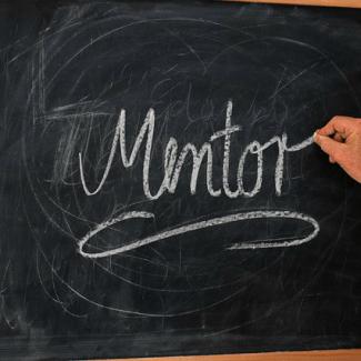 mentorship mentoring
