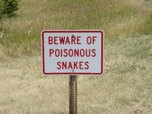 Beware of Poisonous Snakes