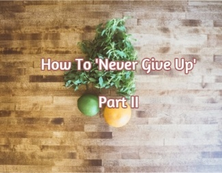 never-give-up-ii-sm