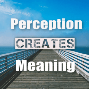 Perception Creates Meaning